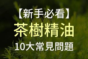 【2020最新】9大茶樹精油功效、8點禁忌、4種痘痘用法、稀釋方式及推薦品牌