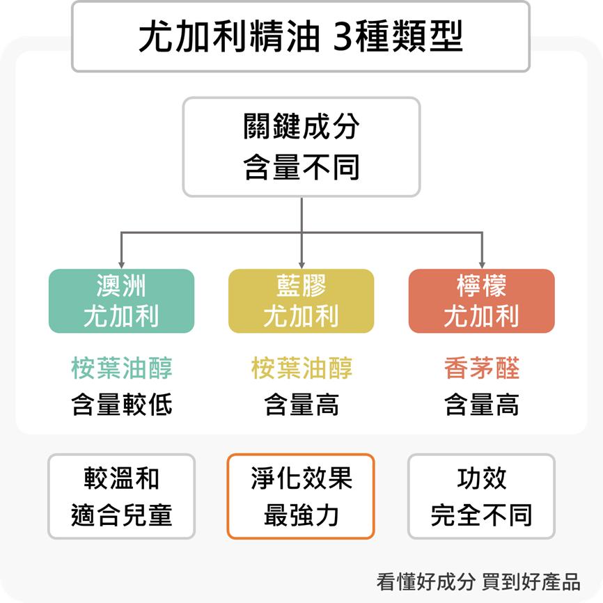 尤加利精油3種類型