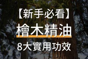 8種實用的檜木精油功效推薦、適合搭配的精油及擴香方式