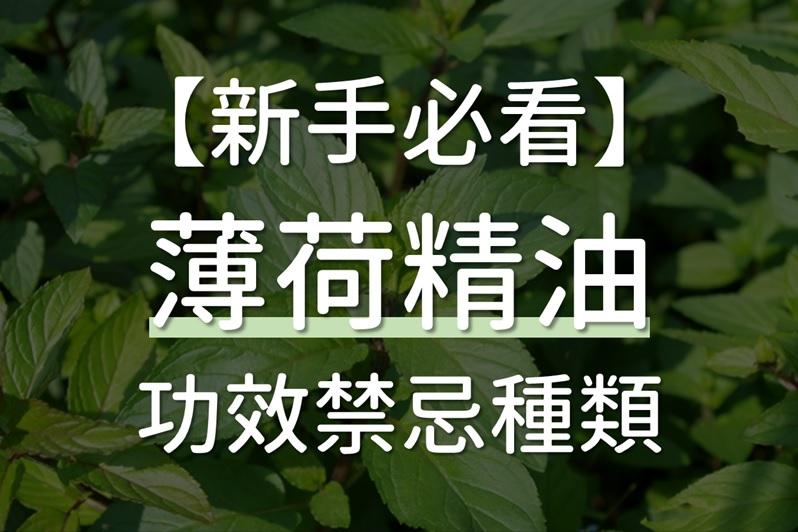 薄荷精油功效禁忌種類(胡椒薄荷、檸檬薄荷、綠薄荷)